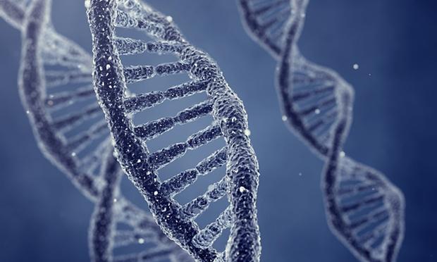 DNA HUMAN DESIGN